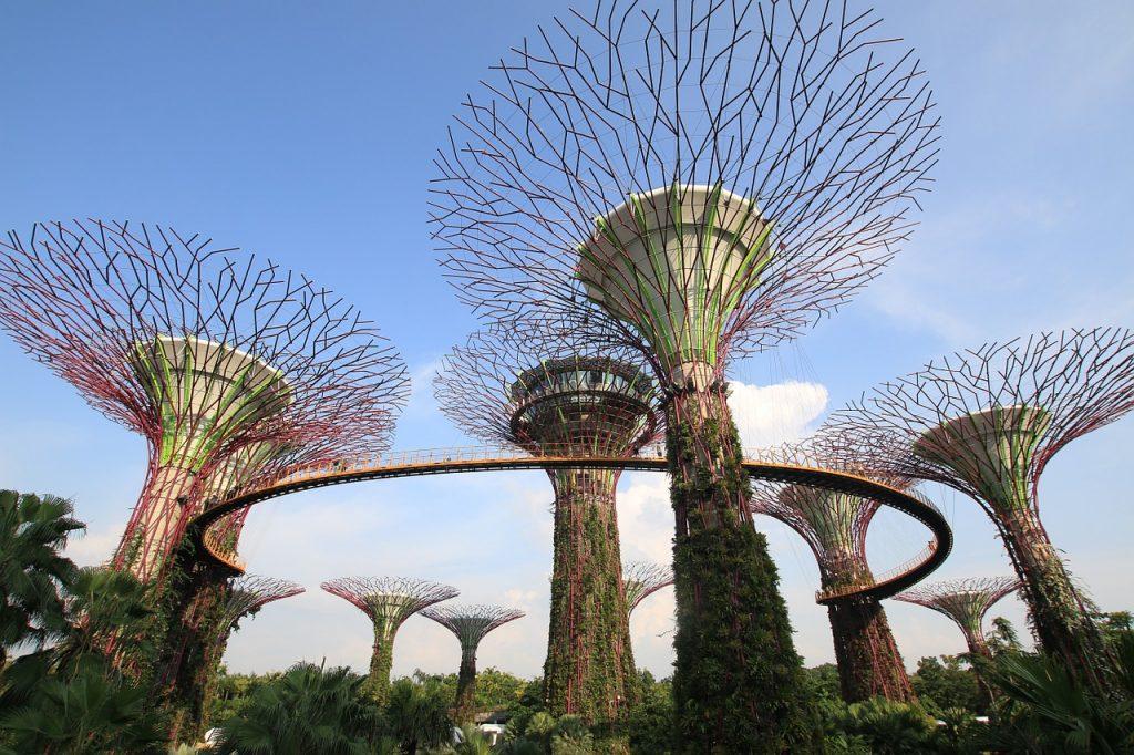 Peraturan denda di Singapura yang umum